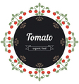 Tomato vegetables vector image