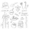 Doodle Set of sugar products vector image