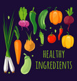 colorful fruits and vegetables vector image