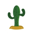 single cactus icon vector image
