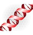 DNA backgound vector image
