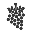 Grapes fruit icon vector image