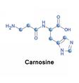 Carnosine dipeptide molecule vector image