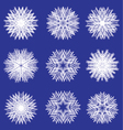 Fluffy white snowflakes for design vector image