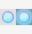 colorful soap bubble with transparency vector image