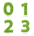 Numbers of green leaves collection vector image vector image