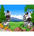 zebra cartoon in the jungle vector image vector image