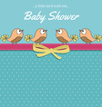 Delicate baby shower card with little birds vector image
