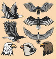 eagle bird cartoon flying animal silhouette vector image