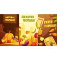 Organic Vegetables Vertical Banners Cartoon Poster vector image