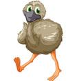 Emu cartoon vector image vector image
