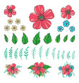 floral elements for create your compositions vector image