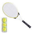 set of tennis rackets and tennis balls isolated vector image