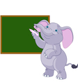 Elephant writing on blackboard vector image