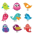 Set of different cute birds vector image