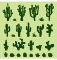 Set of green cacti vector image