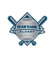 Baseball team logo vector image