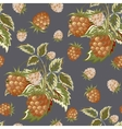 Hand painted pattern of pastel brown raspberry on vector image
