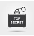 Top secret icon vector image
