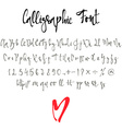 Calligraphic font with numbers ampersand and vector image