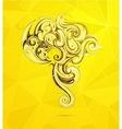 South America artistic shape vector image