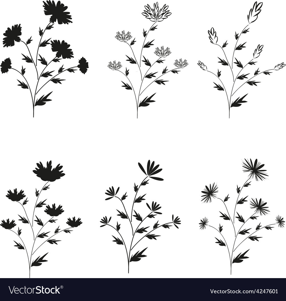 A set of six black handdrawn flowers on isolated vector