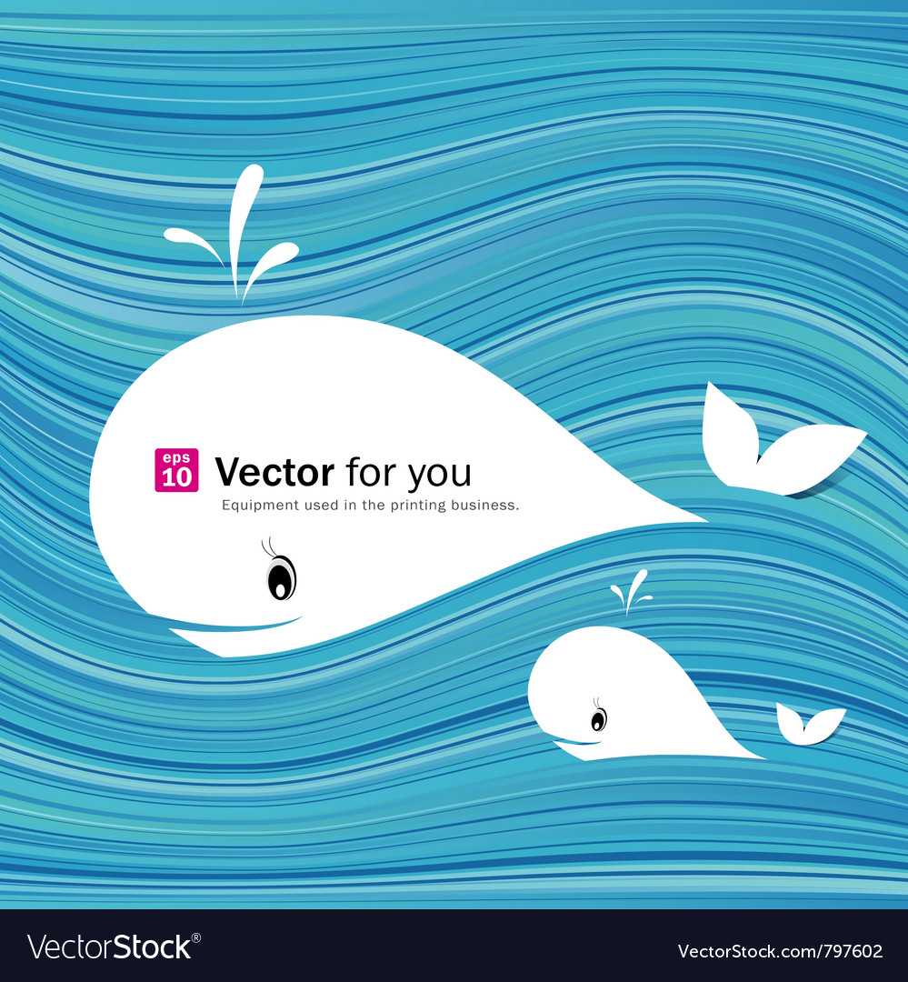 White whale paper materials design vector