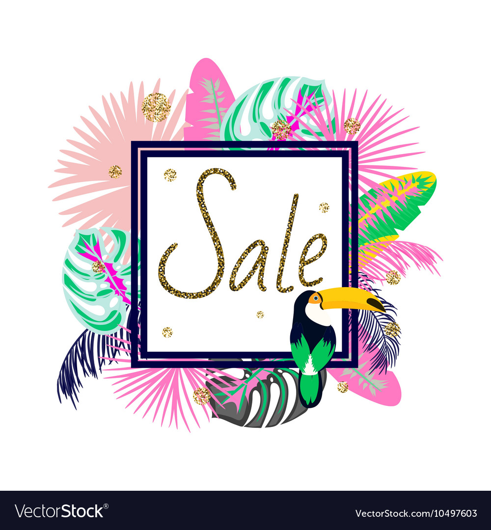 Frame banner for summer sale advertisement palm vector