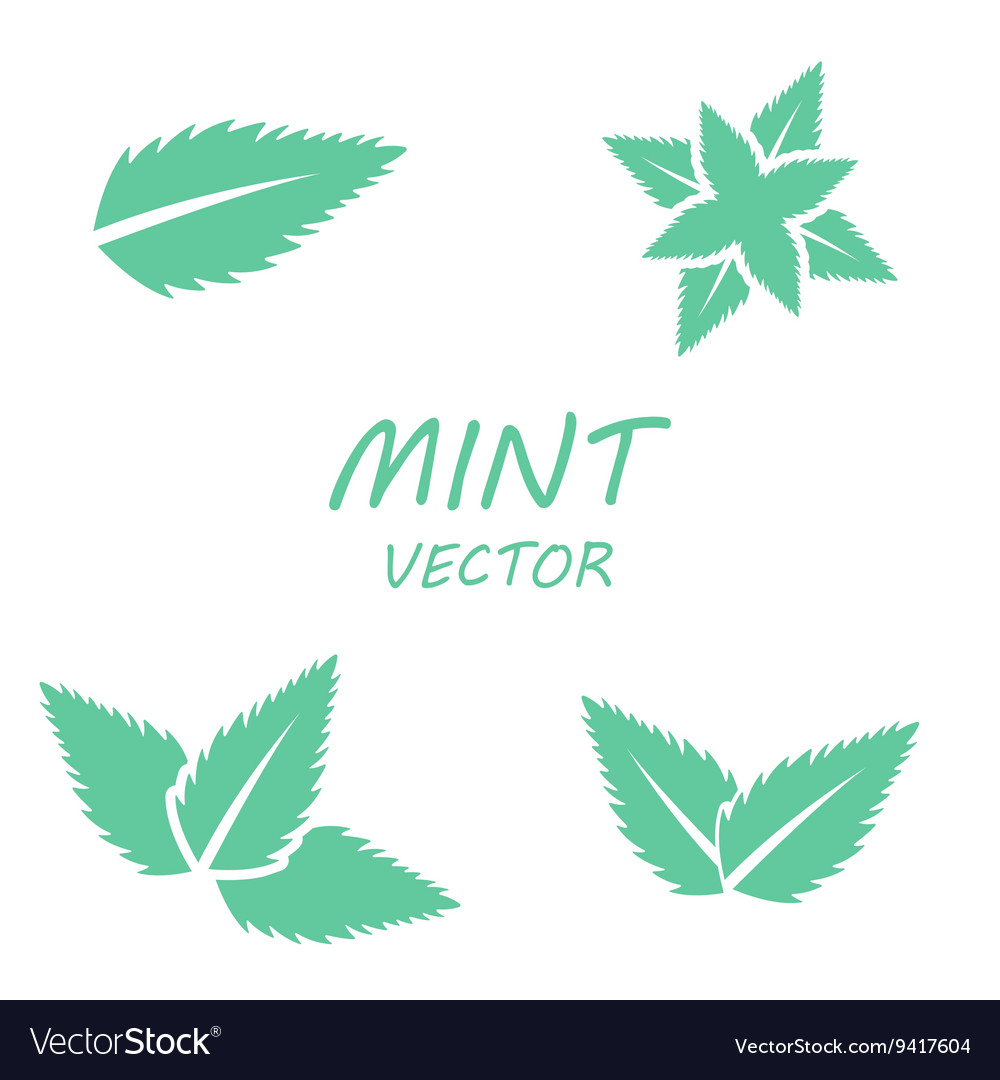 Flat mint icons set vector
