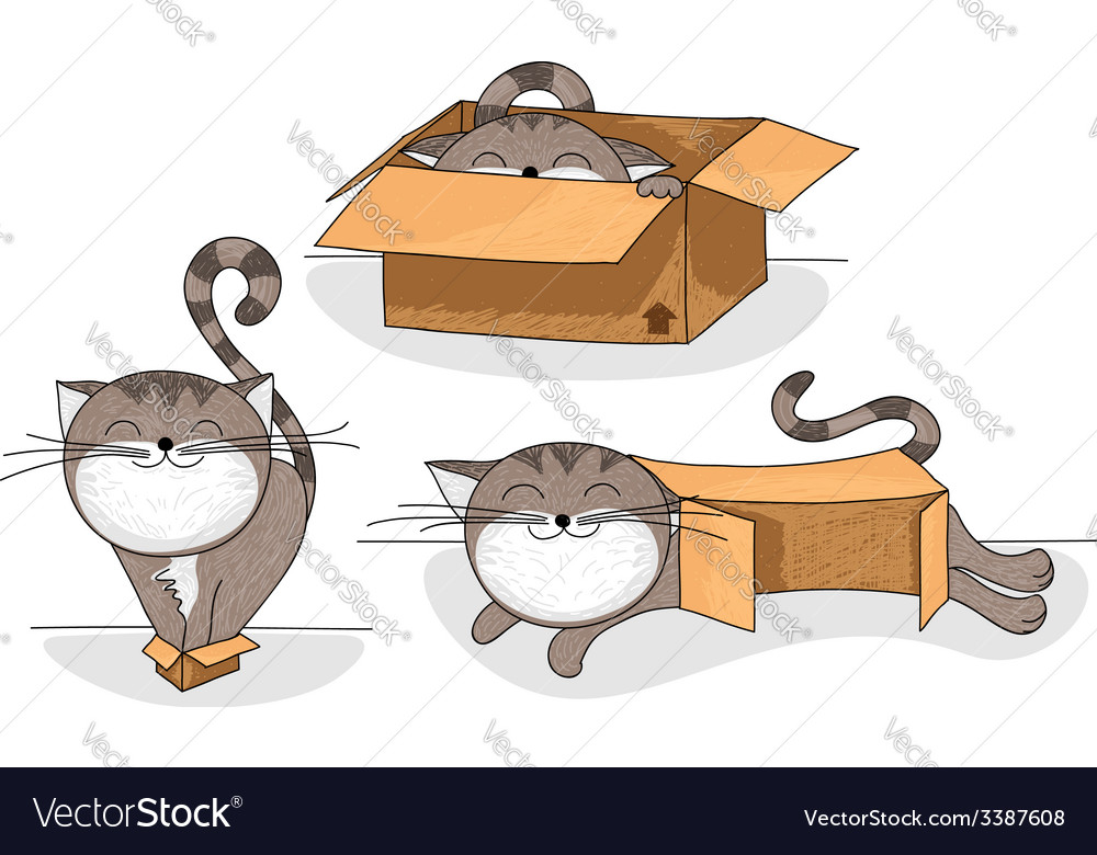 Cat in box cartoon collection vector