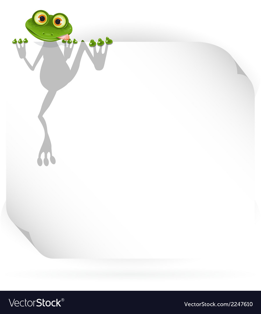Frog and white background vector