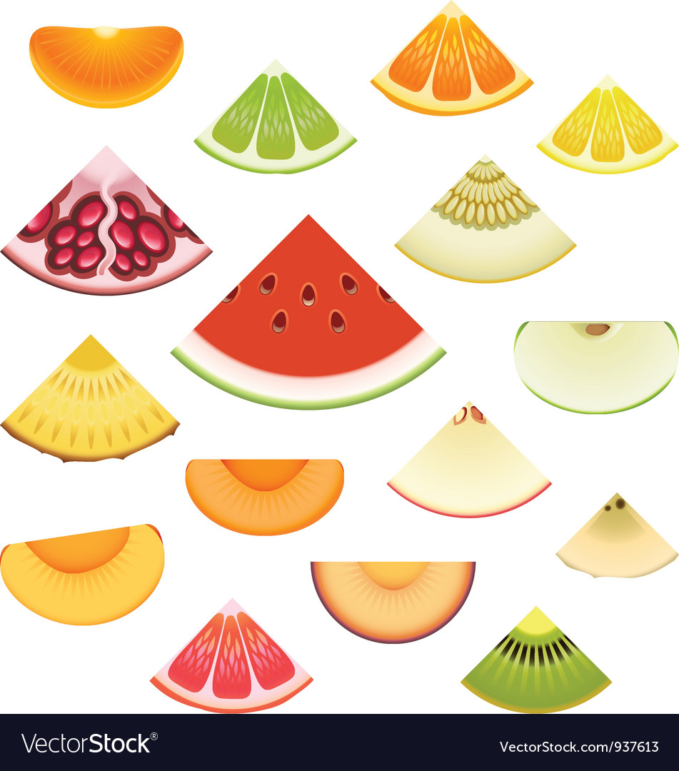 Fruit wedge set vector