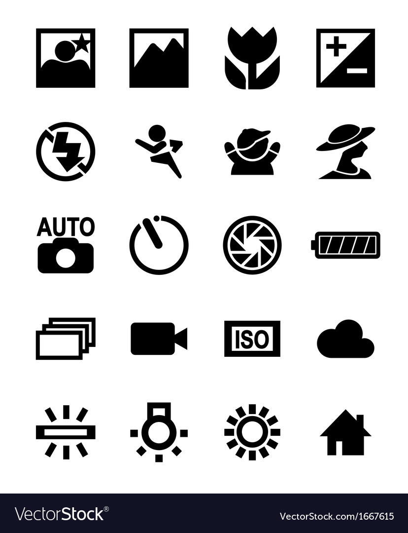Dslr camera function icon vector