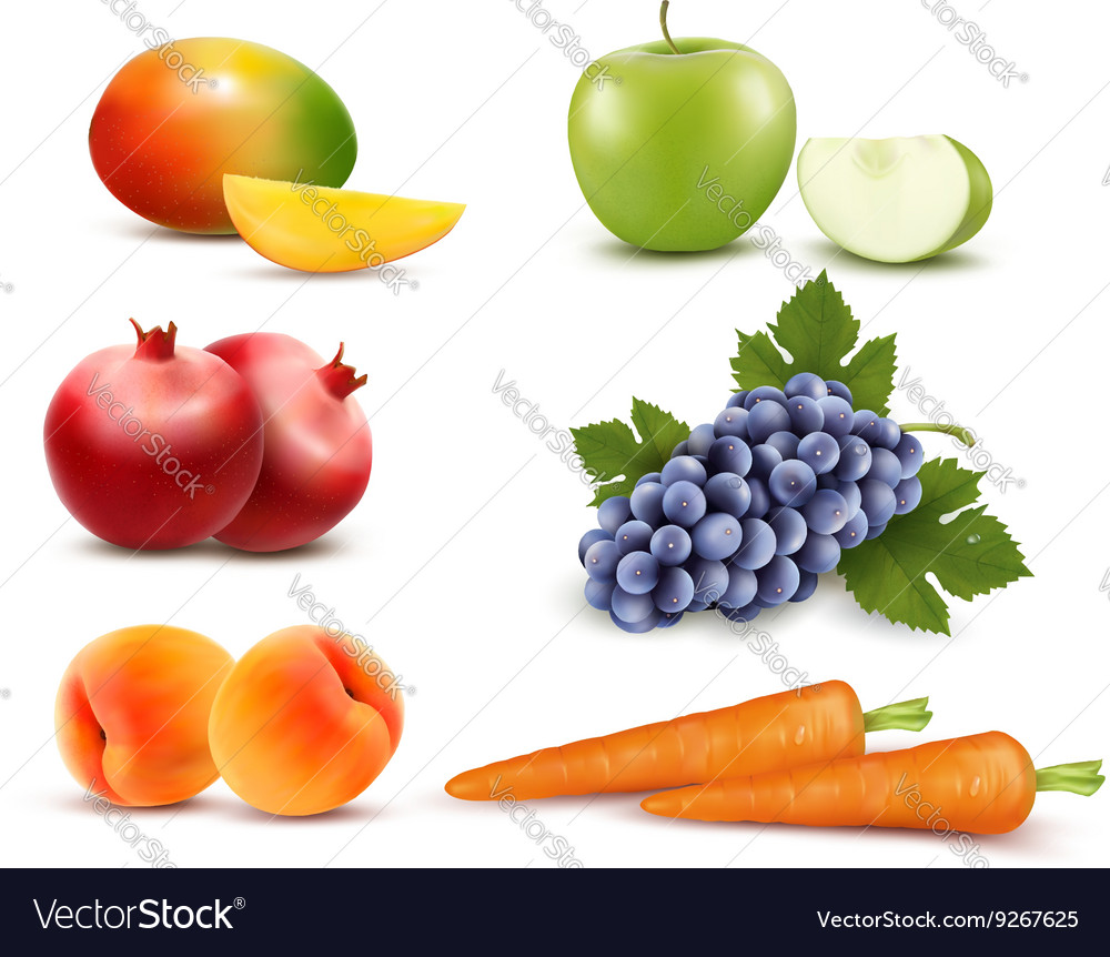 Big group of different fruit and vegetables vector