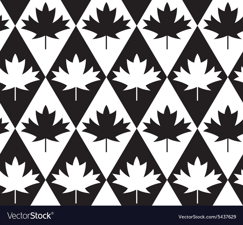 Black and white alternating maple leaves on vector