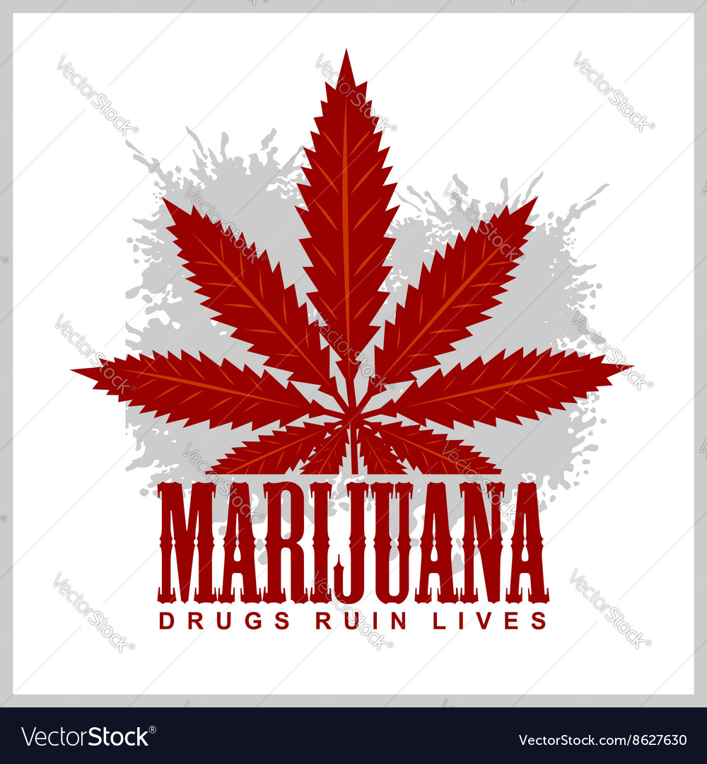 Cannabis  marijuana leaf on grunge background for vector