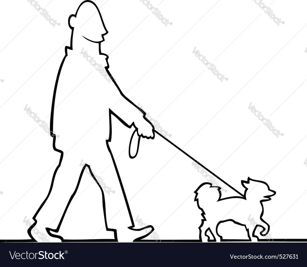 Man walking the dog vector