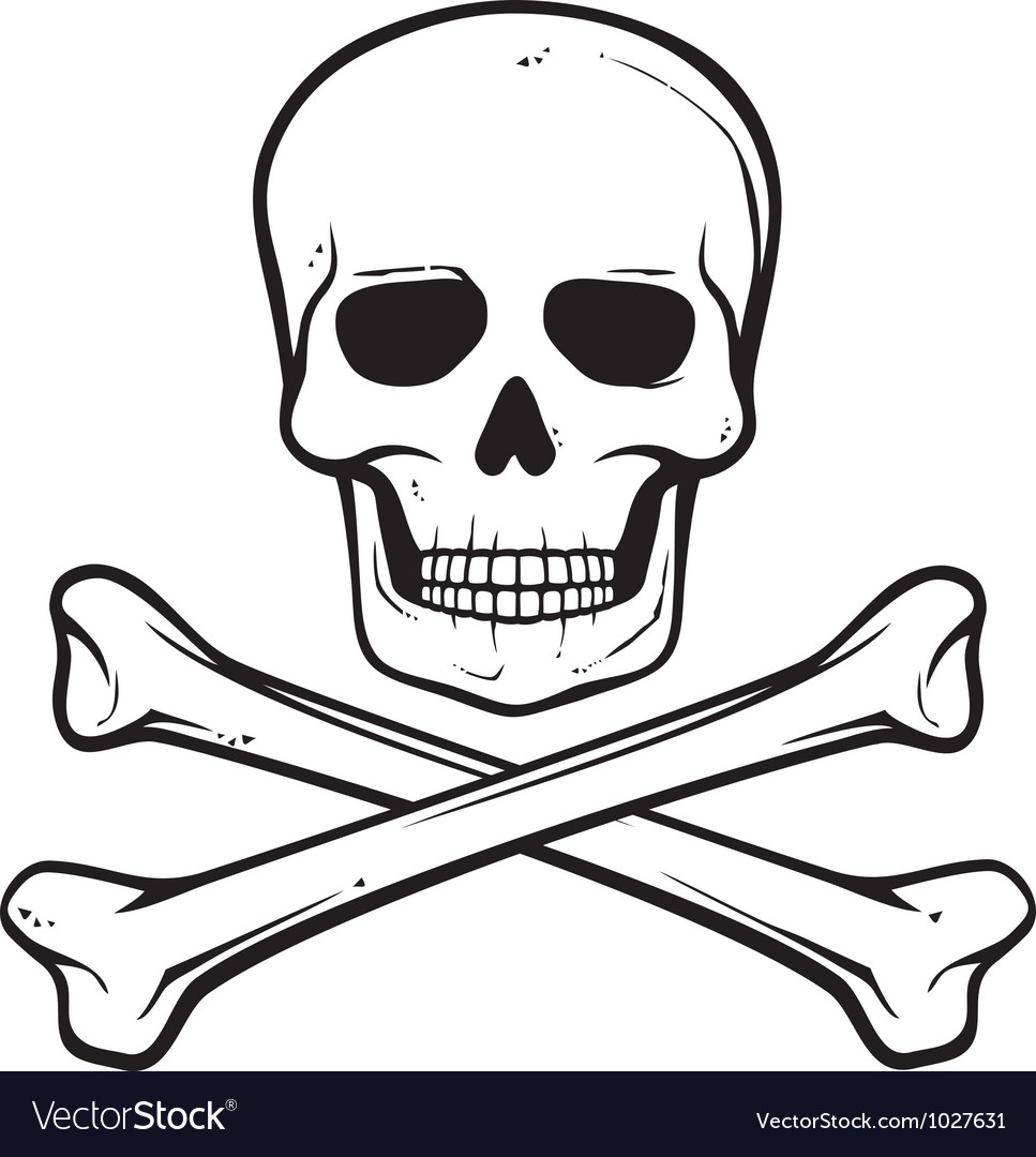Skull with crossed bones  pirate symbol vector