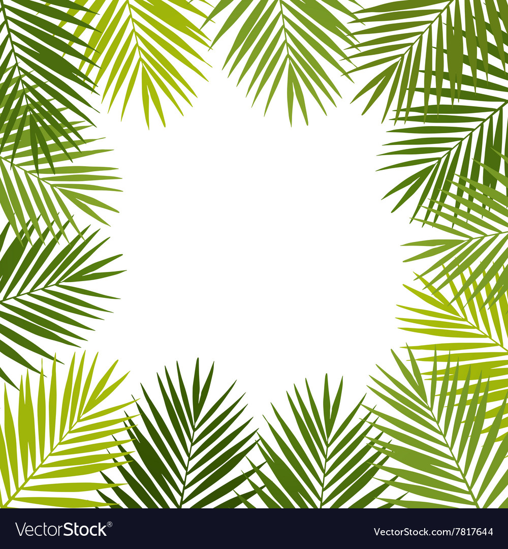 Palm leaf silhouettes frame tropical leaves vector