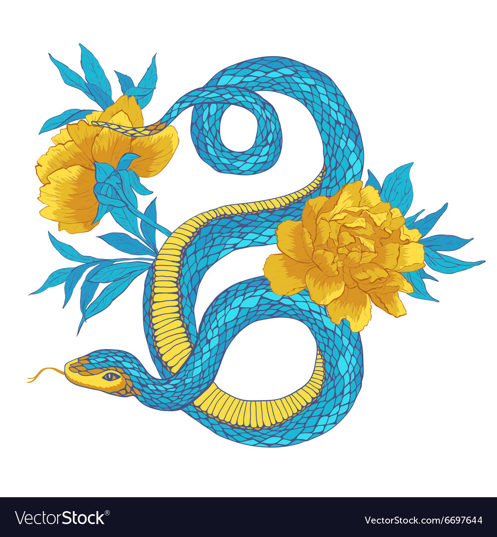 Snake and flowers vector