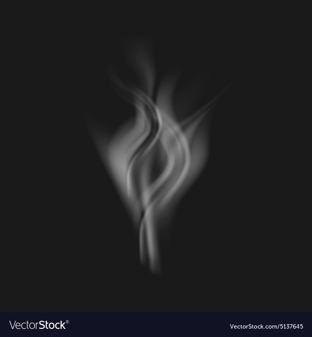 Realistic white smoke on a black vector