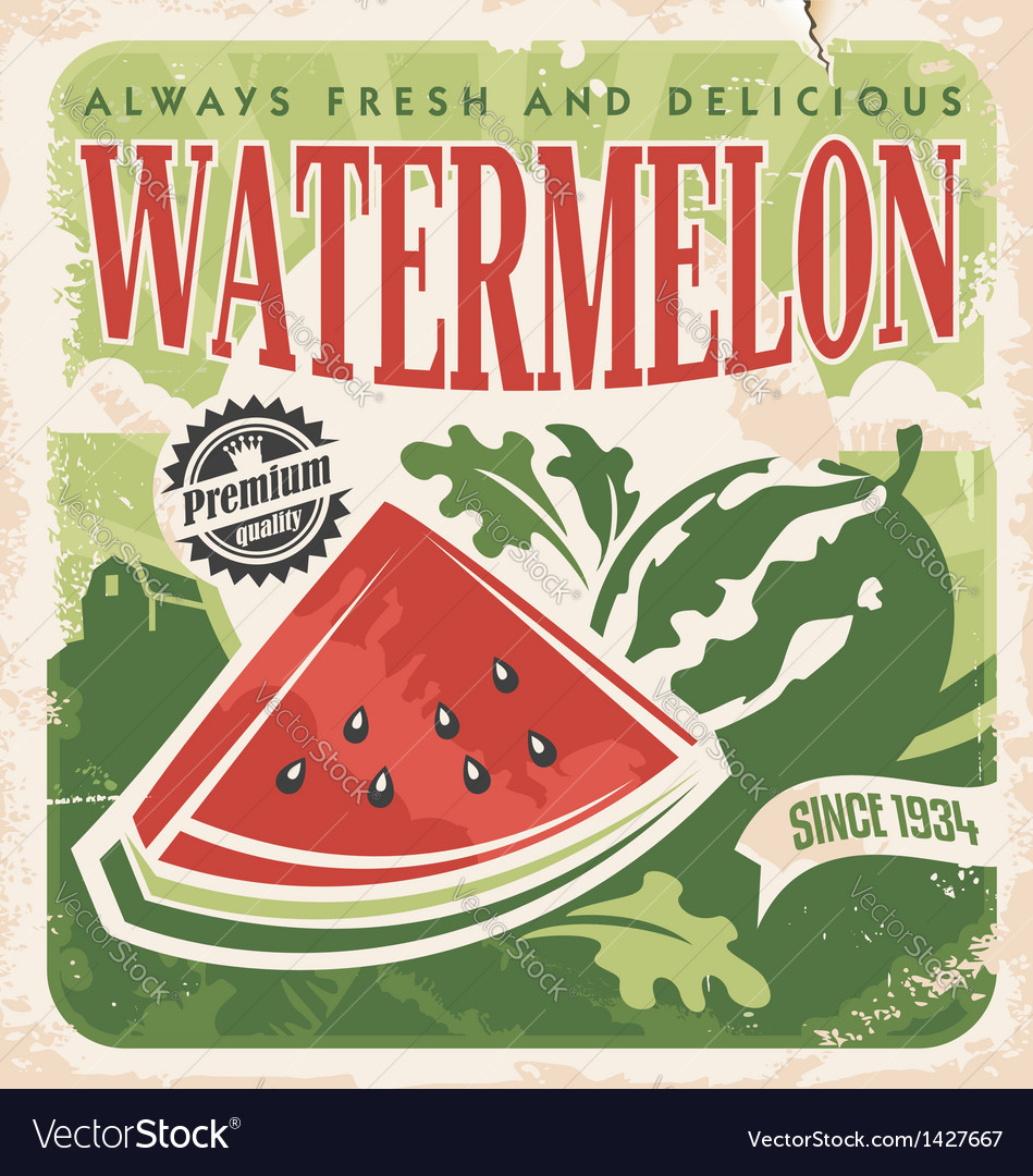 Vintage poster template for watermelon farm vector