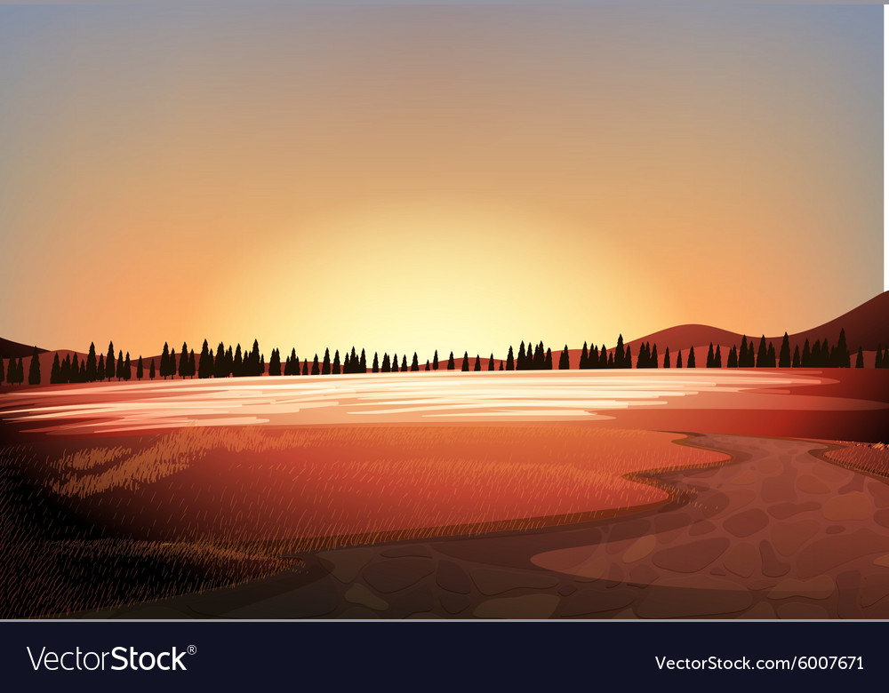 Silhouette field with pine trees background vector