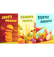 Exotic Fruits Vertical Banners Cartoon Poster vector image
