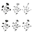 A set of six black hand-drawn flowers on isolated vector image