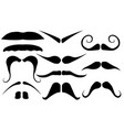 set of different mustaches vector image