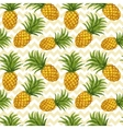 Hand drawn seamless pattern with pineapple in vector image