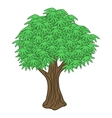 Isolated tree vector image vector image
