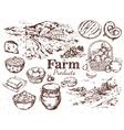 Farm Products Sketch Set vector image