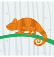 Chameleon sitting on a branch vector image vector image